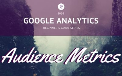 Google Analytics Beginner's Guide Series: Audience Metrics