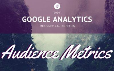 Google Analytics Beginner's Guide Series: Audience Metrics